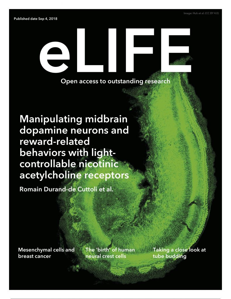cover-elife